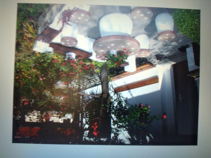Bild 2: Villa in Bulgarien zu verkaufen