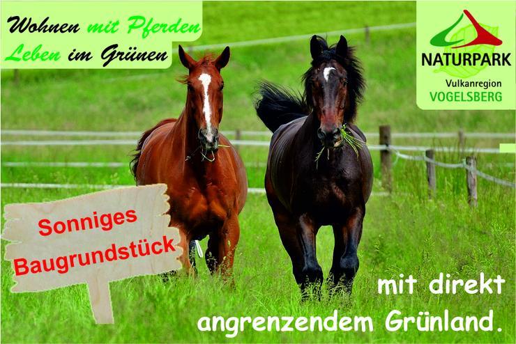 Baugrundstück mit Grünland in Ortsrandlage - Wohnen und Leben mit Pferden