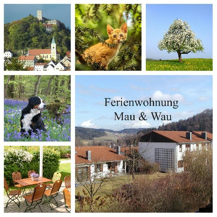 Ferien mit Mau & Wau - Bayerischer Wald- Sommer 2020 - Katzen + Hunde willkommen !