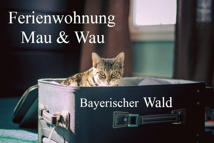 Tierpension - NEIN DANKE - Ferienwohnung Mau & Wau - Bayerischer Wald - Katzen + Hunde willkommen !
