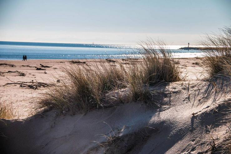 Bild 18: Süd-Frankreich: Genießen Sie von der mediterranen Sonne während der Ferien 2020