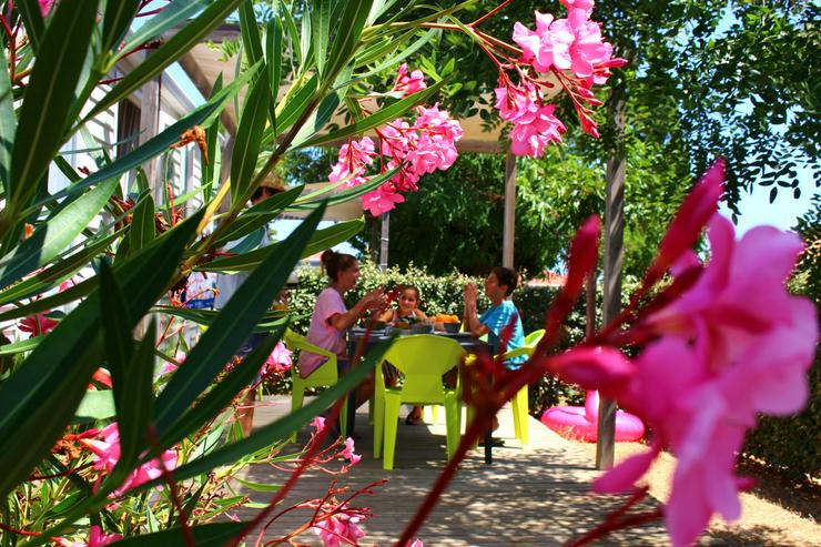 Süd-Frankreich: Genießen Sie von der mediterranen Sonne während der Ferien 2020 - Sport & Freizeit - Bild 5