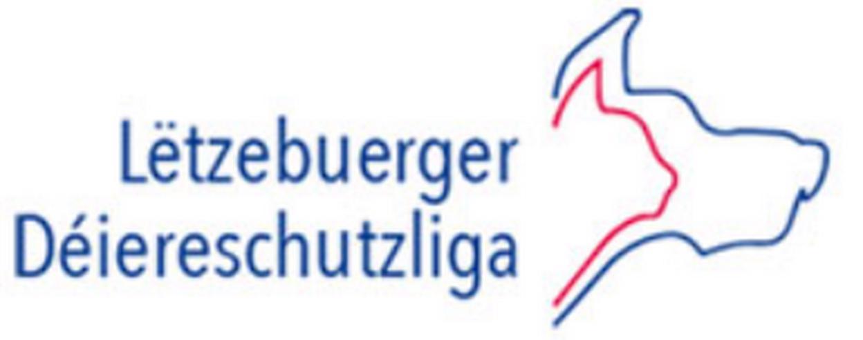 Tierpfleger/in (m/w/d) in Luxemburg - Weitere - Bild 1
