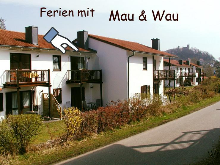 Bild 2: Ferien mit Katzen - Bayerischer Wald - Luftkurort Falkenstein