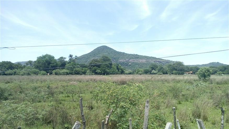 18 ha Grundstück in der Gemeinde La Colmena, Paraguay