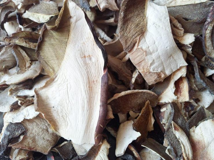 Bild 3: Getrocknete Steinpilze