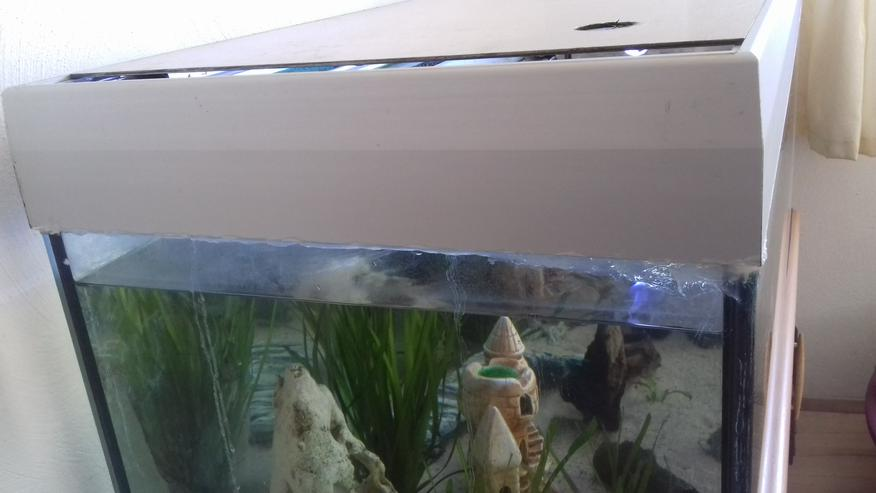 400l Aquarium mit Unterschrank