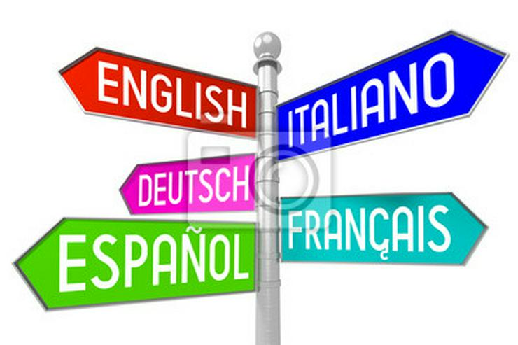 Nachhilfe in Englisch,Französisch,Latein,Spanisch,Italienisch