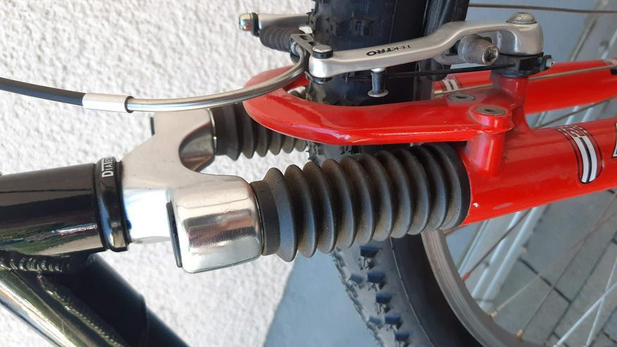 Bild 14: Fahrrad MTB Marke RALEIGH PRO-LINE 1000 26 Zoll