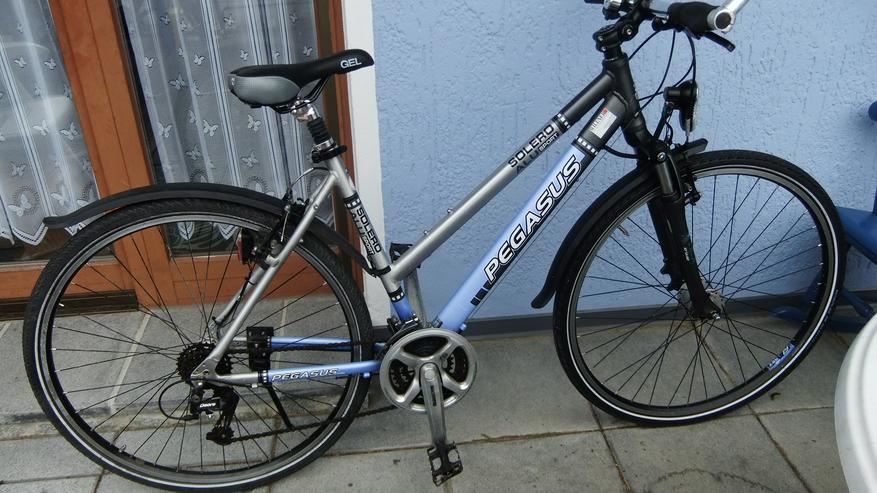 Damenfahrrad 28 Zoll von Pegasus Solero Versand auch möglich - Mountainbikes & Trekkingräder - Bild 1