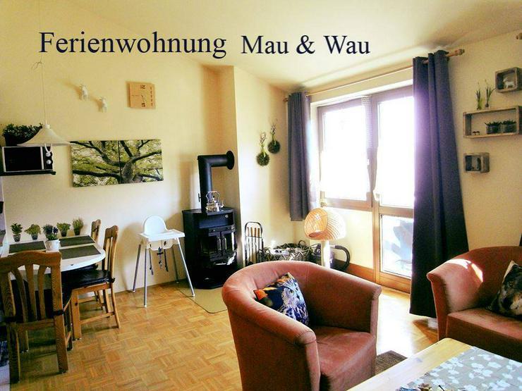 Bild 1: Ferien mit Hunden und Katzen im Bayerischen Wald