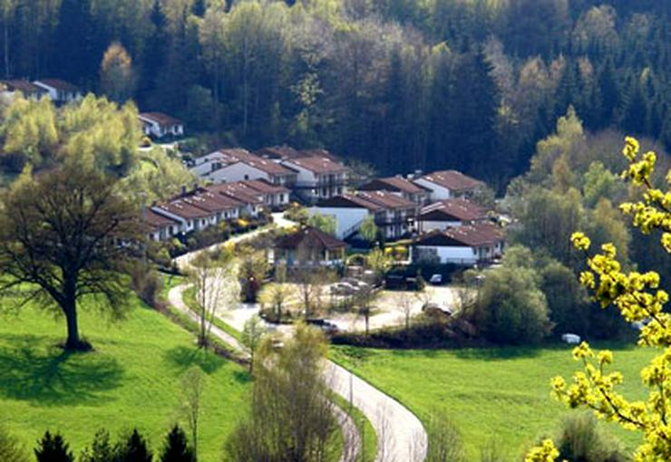 Bild 18: Ferien mit Hunden und Katzen im Bayerischen Wald