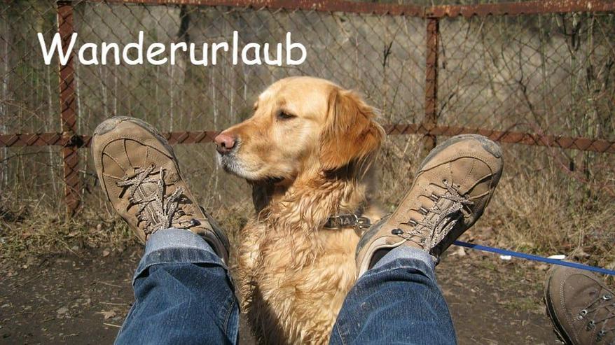 Ferien mit Hunden und Katzen im Bayerischen Wald - Ferienwohnung Mau & Wau - Ferienwohnung Bayrischer Wald - Bild 1