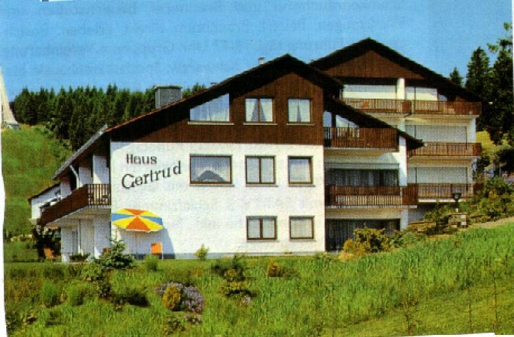 FW mit Hallenbad im Haus - Ferienwohnung Schwarzwald - Bild 1