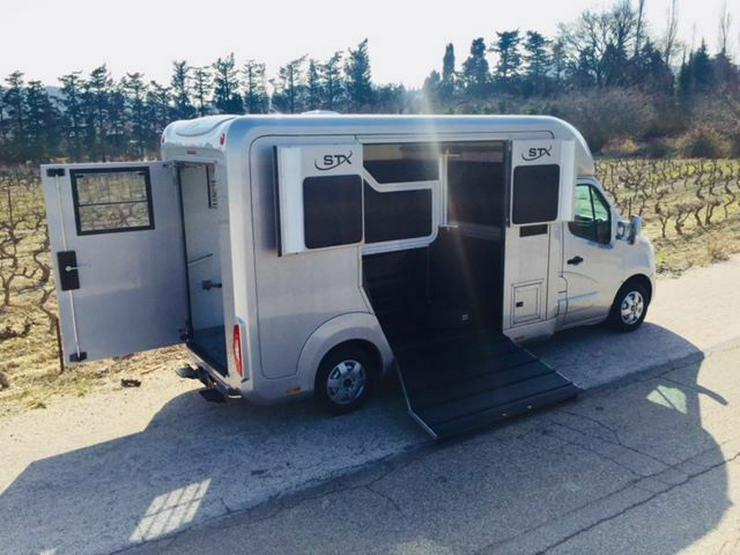 Bild 3: Renault Master STX DCI 170 Bi Turbo transportiert 2 große Pferde