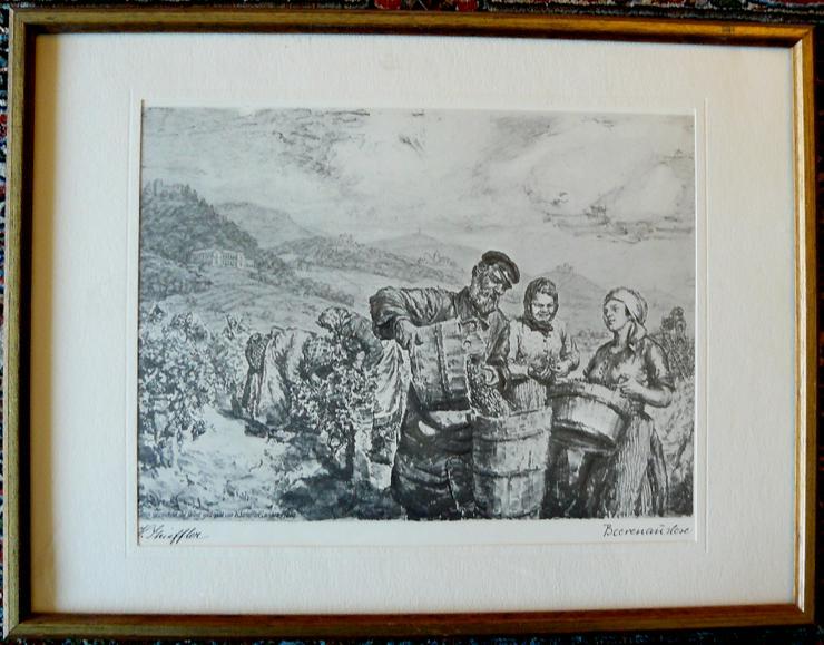 Strieffler Heinrich Beerenauslese Grafik (B074)