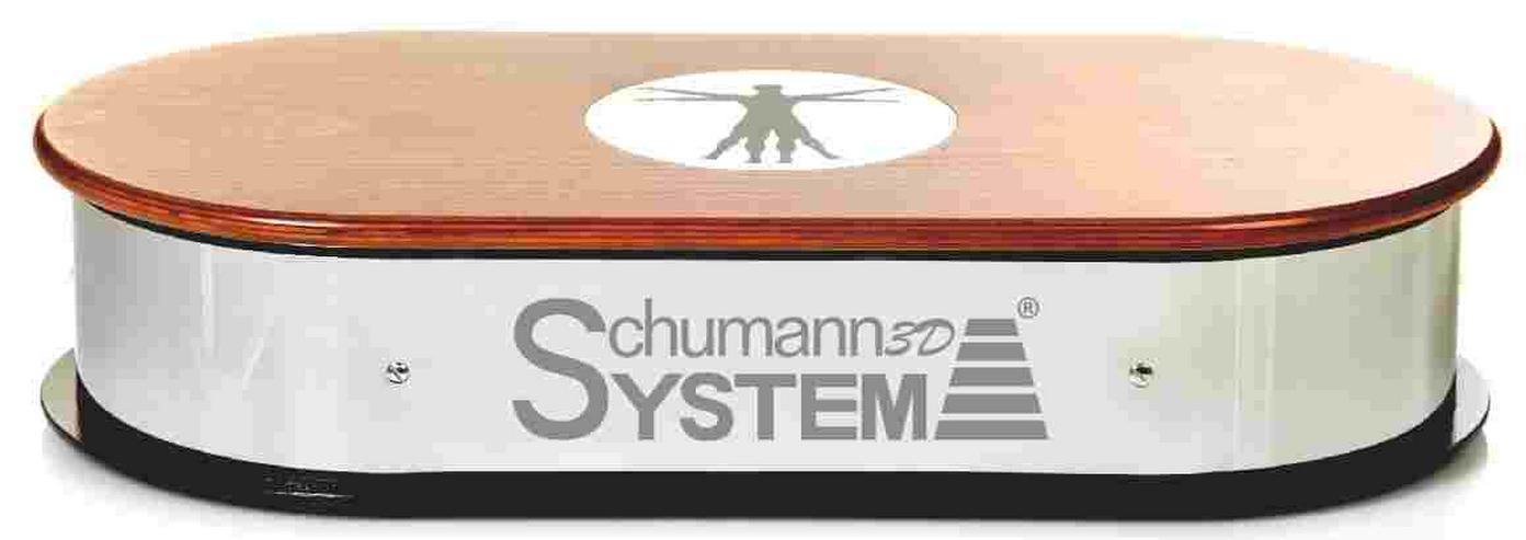 Schumann 3D Platte Medizinische Vibrationsplattform