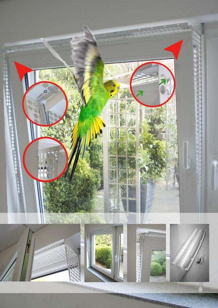 Kippfensterschutz für Vögel, OHNE BORHEN, OHNE KLEBEN