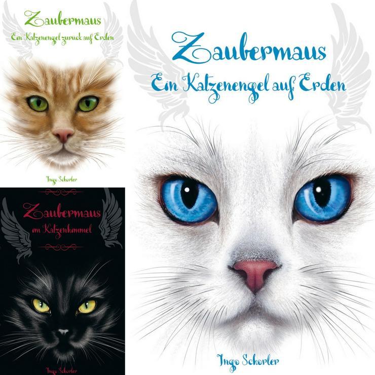Zaubermaus ein Katzenengel zurück auf Erden Band 3 - Kinder& Jugend - Bild 1