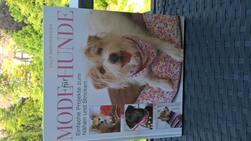 Mode für Hunde