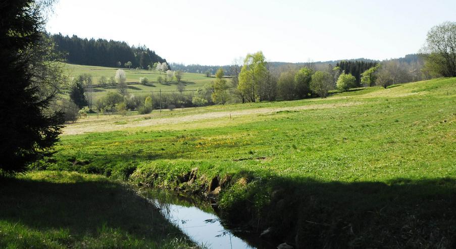 Bild 2: Ferienwohnung im Schwarzwald, Luftkurort Herrischried zu vermieten