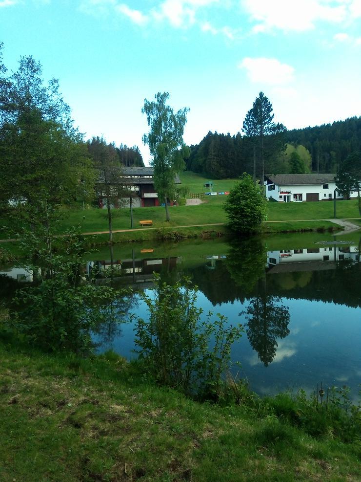 Bild 5: Ferienwohnung im Schwarzwald, Luftkurort Herrischried zu vermieten