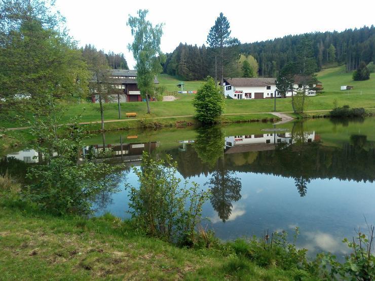 Bild 1: Ferienwohnung im Schwarzwald, Luftkurort Herrischried zu vermieten