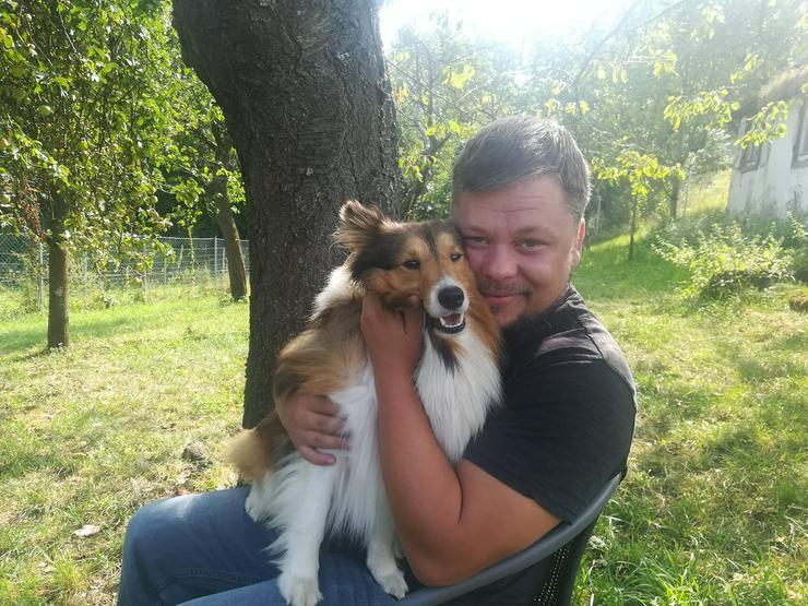 Hundepsychologe und Verhaltensberater  - Tierbetreuung & Training - Bild 1