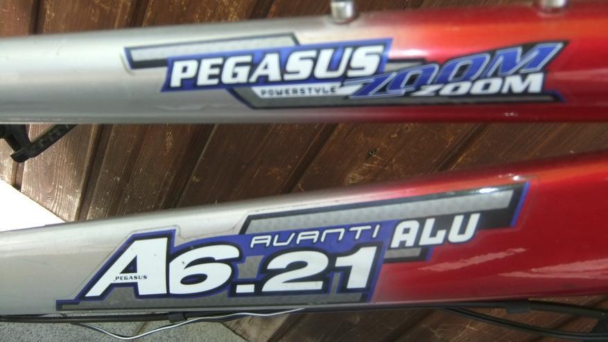 Bild 3: Kinderfahrrad Pegasus 26 Zoll Mountainbike Versand möglich