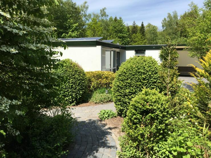 5-PERSON Ferienbungalow 142 im Bungalowpark Drouwenerzand | Drenthe MIT gratis Eintritt Freizeitpark
