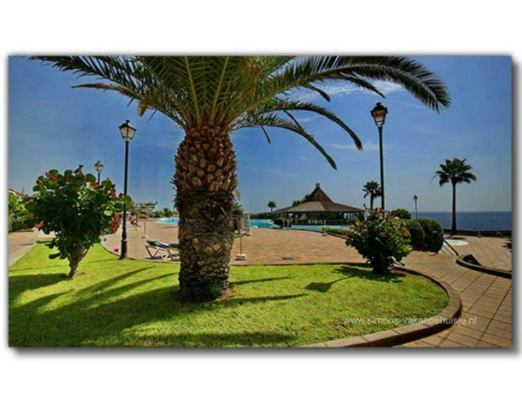 Bild 2: Teneriffa Wohnungen 4 Sterne Komplex Rocas del Mar