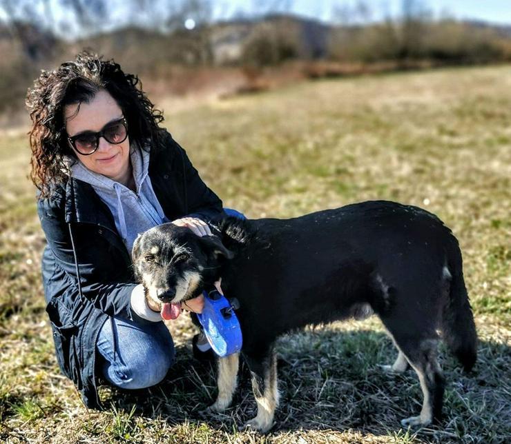 Hund zur Adoption - KUBUS