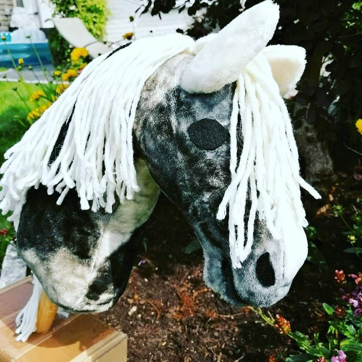 Hobby horse Steckenpferd  - Lernen & Experimentieren - Bild 1