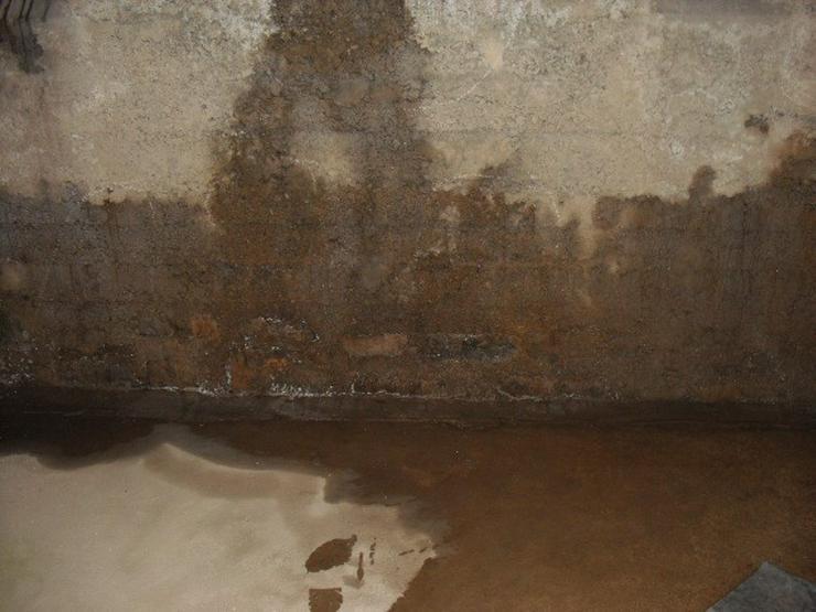 Schimmelpilzsanierung, Abdichtung feuchter Wände