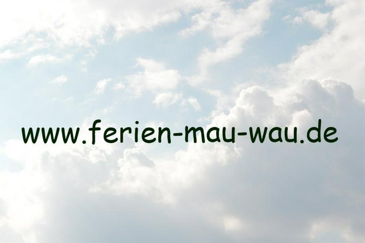 """Bild 15: Freistehendes Ferienhaus """"Mau & Wau"""" - Waldhessen - Hunde und Katzen willkommen !"""