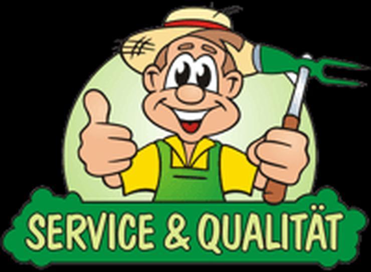 Hausmeister gesucht .......? - Haushaltshilfe & Reinigung - Bild 1