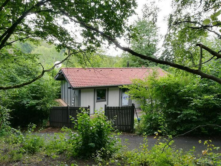 Freistehendes Ferienhaus in Waldhessen - Haustiere willkommen - Ferienhaus Mau & Wau