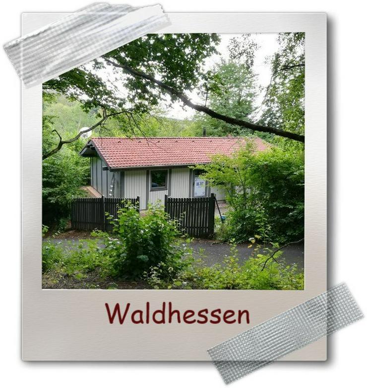 """Ferienhaus """" Mau & Wau """" - Freistehendes Ferienhaus - Waldhessen - Haustiere willkommen !"""