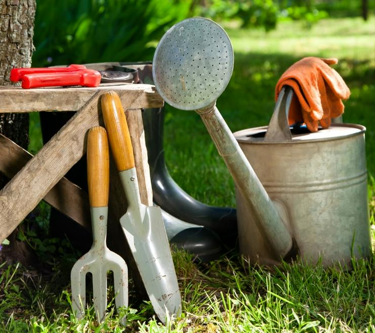 Bild 2: Gartenarbeit zu pauschalpreisen
