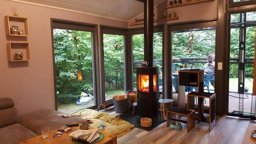 Bild 9: Urlaub mit Hunden und Katzen - freistehendes Ferienhaus in Waldhessen