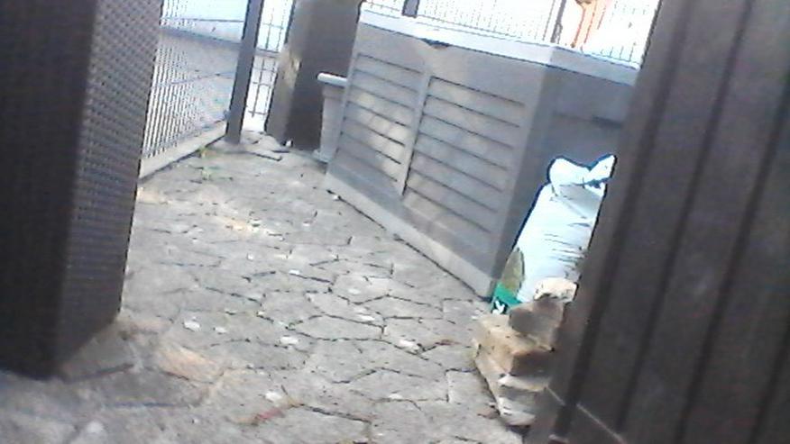 Terrassen Steine und Gehweg Steine  zu verschenken