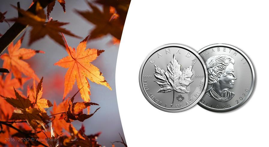 Kanada Maple Leaf 2020 1 Unze Silber