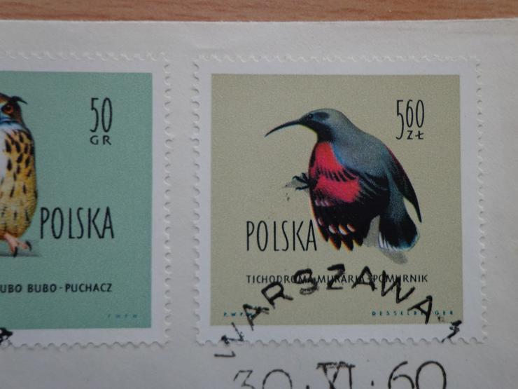 """Bild 4: FDC Ersttagsbrief Polen 1960 """"Geschützte Vögel in Polen"""" (Ptaki chronione w Polsce)"""