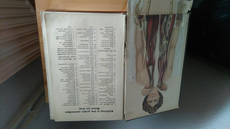 Bild 3: Ratgeber Gesundheit v.1930 !