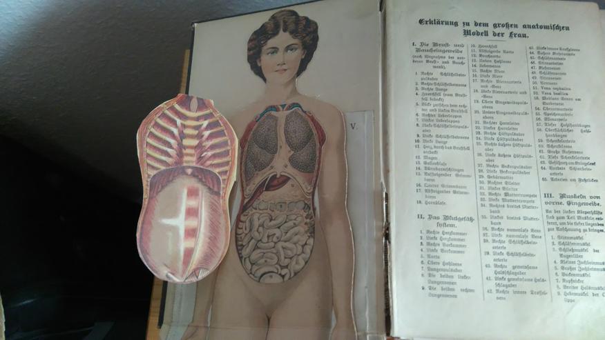 Bild 2: Ratgeber Gesundheit v.1930 !
