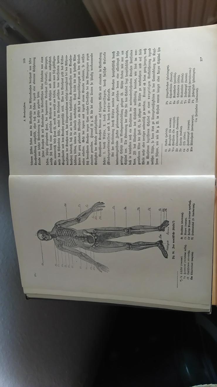 Bild 13: Ratgeber Gesundheit v.1930 !