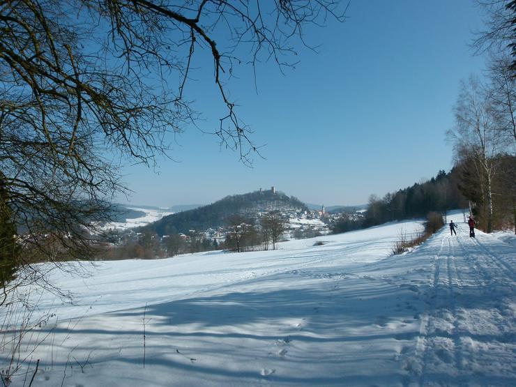 Winterurlaub mit Mau und Wau im Bayerischen Wald - Katzen und Hunde willkommen !