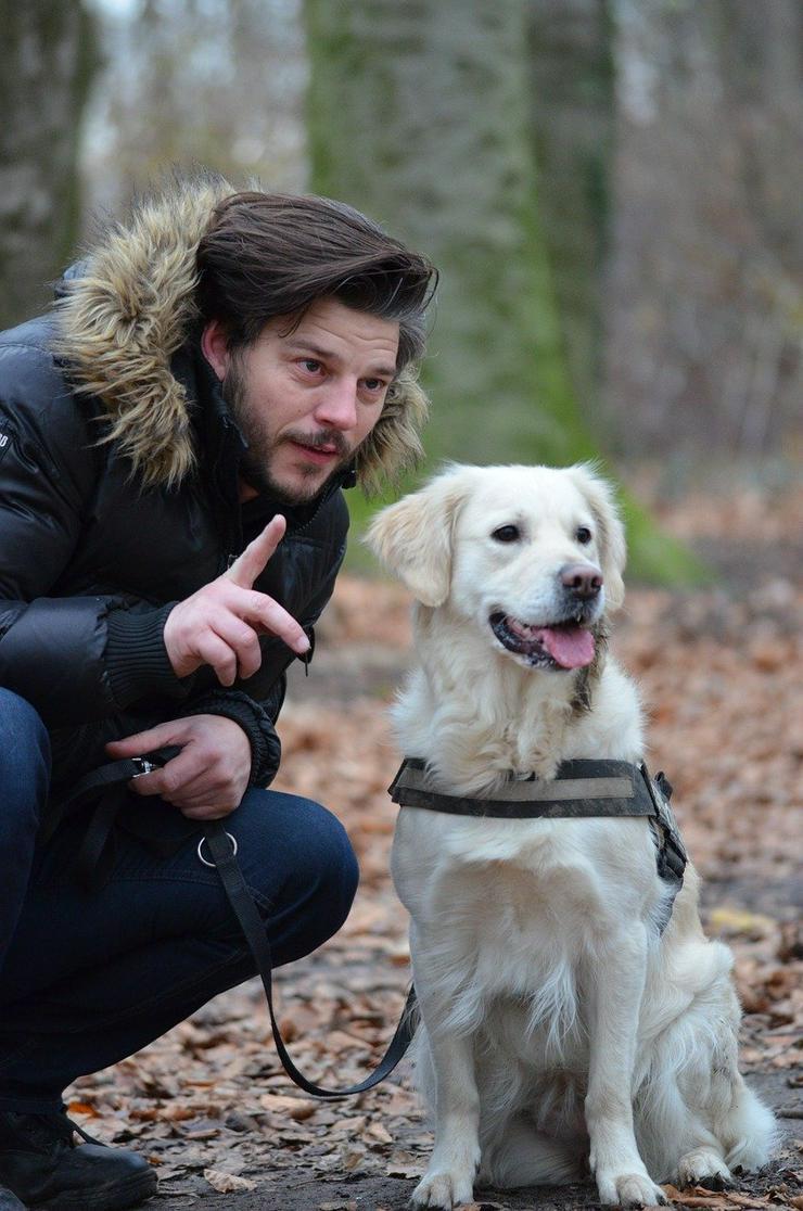 Hundeführerschein Hundeschule Bramsche Osnabrück