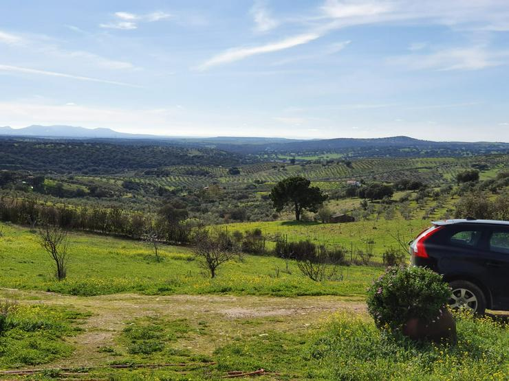 Bild 2: Kleines Landgut in coronafreier Region Spaniens