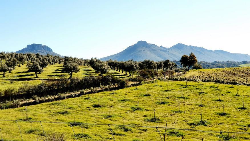 Bild 4: Kleines Landgut in coronafreier Region Spaniens